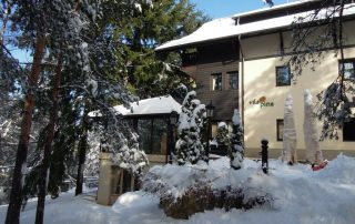 Vila-Pina-Zlatibor-Travel-Partner000