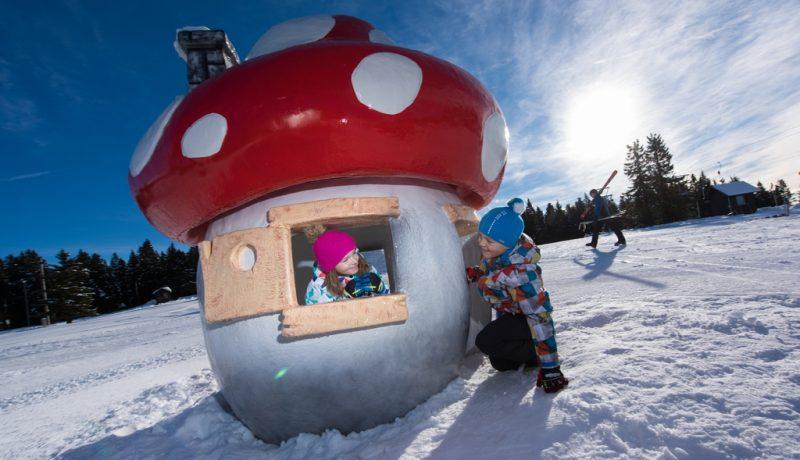 Rogla-playground-Travel-Partner25