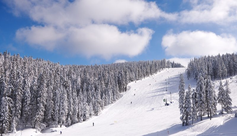 Rogla-winter-18-4-Travel-Partner31