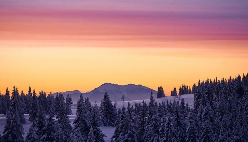 Rogla-winter-18-7-Travel-Partner34